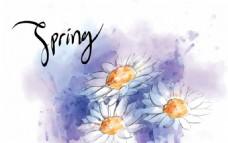 手绘水彩春季雏菊背景