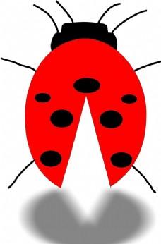 七星瓢虫 设计