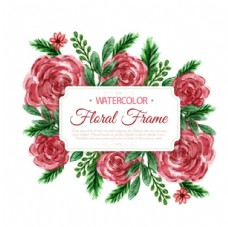手绘水彩春天的花卉标签