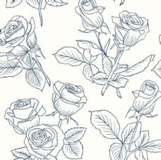 手绘线稿春季玫瑰花插图