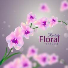 朦胧背景春季粉色兰花