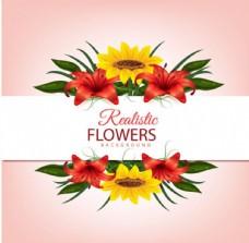 粉底春季花卉标题