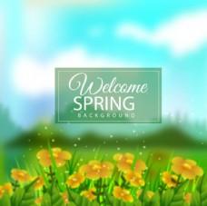 春季草地花卉海报