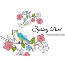 彩色线稿春季花鸟插图