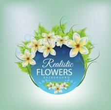 绿底春季花卉标题