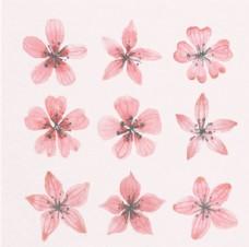 手绘水彩春季樱花花瓣集
