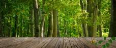 绿色木板淘宝背景图