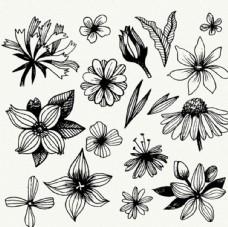 手绘黑白春季花卉线稿