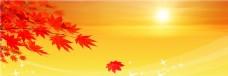 夕阳下的枫叶banner背景素材
