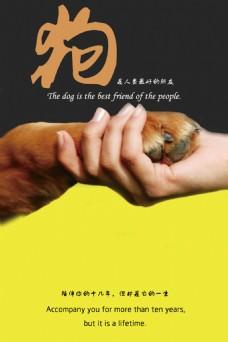 狗狗公益海报