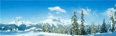 冬季banner背景设计