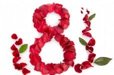 玫瑰花组成的数字8图片