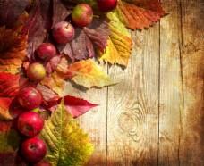 苹果树叶背景图片