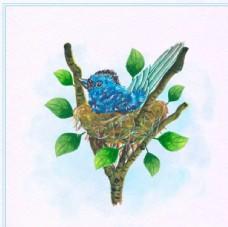 水彩春季站在鸟窝的小鸟