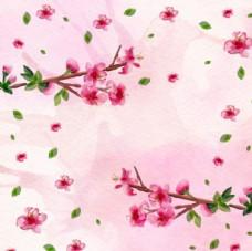 粉底水彩春季樱花背景
