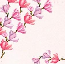 手绘水彩春季花卉花枝花朵