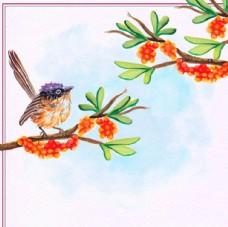 手绘春季站在枝头的小鸟