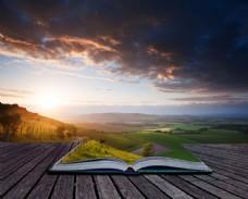 木板上的创意草地书本图片