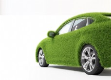 铺满草的汽车图片