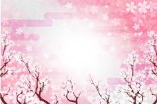 美丽樱花林