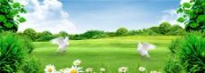 绿色草地天空简洁图片
