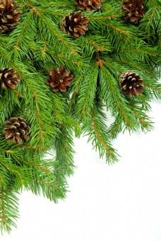 圣诞树背景图片