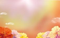简单花朵背景