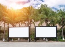 椰树下的广告牌图片