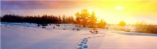 阳光下的雪地banner图片
