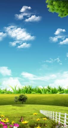 蓝天绿地花朵背景