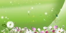 绿色星光花朵背景