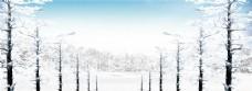 冬季森林banner
