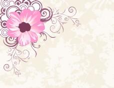 花纹花卉素材背景