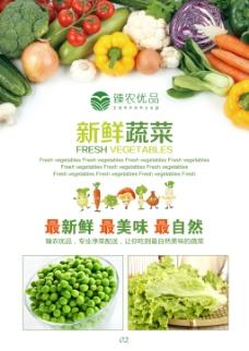 农业宣传单 水果蔬菜