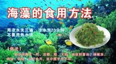 海藻的食用方法