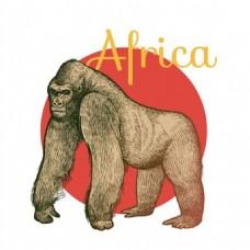 手绘非洲猩猩矢量素材下载