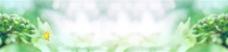 绿色小清新banner背景图