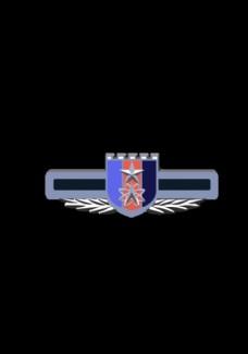 战略支援部队徽标