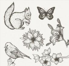 6款手绘动植物矢量素材