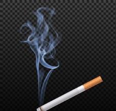香烟的烟气矢量素材