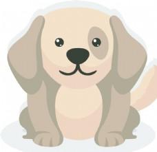 可愛 寵物 狗 動物 雪納瑞