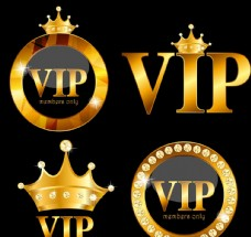 VIP矢量素材